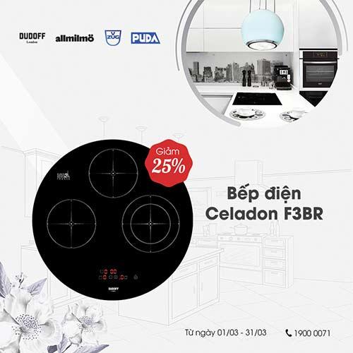 bep-dien-Celadon-F3BR