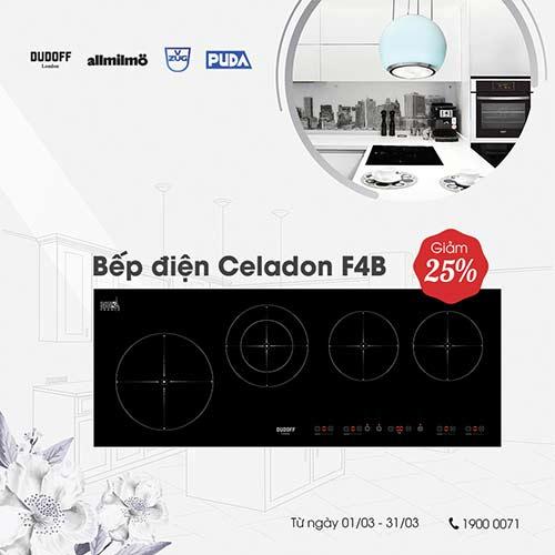 bep-dien-Celadon-F4B