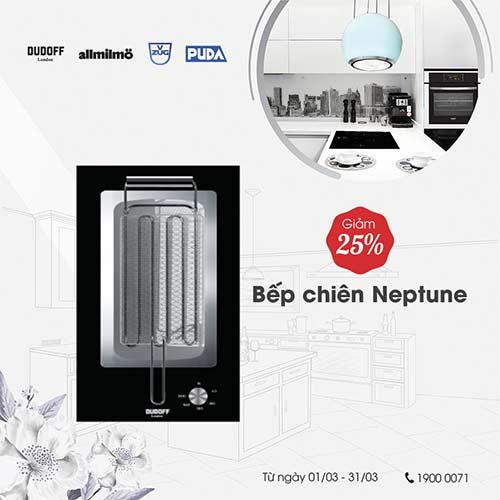 bep-domino-Neptune