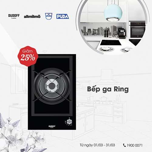 bep-gas-Ring